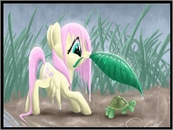 Fluttershy, My Little Pony, Przyja�� To Magia
